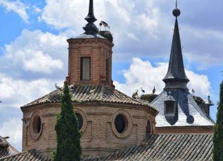 Overbooking de cigüeñas en la ciudad patrimonio