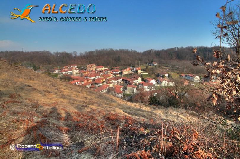 IMG_2636_7_8_tonemapped-1500 alcedo