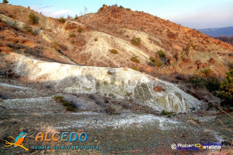 IMG_2735_6_7_tonemapped-1500 alcedo