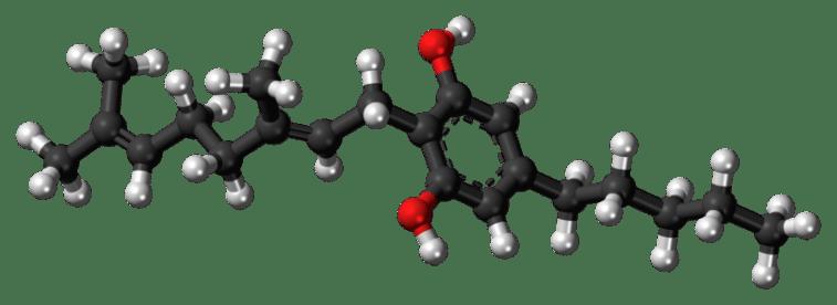 CBG (cannabigerol) molecule