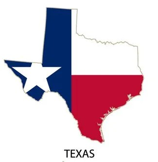 dads state of texas jobs