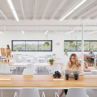 led office lights for every application