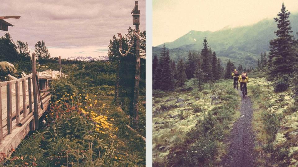 Westy-Alaska-001
