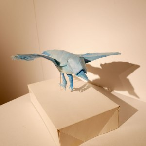 Exposition d'origami - Tetsuya Gotani à Vich