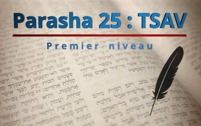 Parasha 25 : TSAV (ordonne d'urgence) – Premier niveau