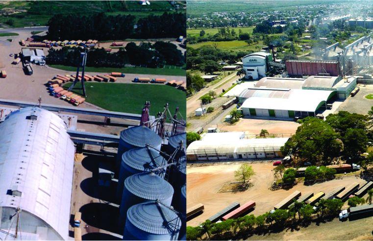 CAAL, uma gigante do cooperativismo comemora 43 anos no mercado do arroz