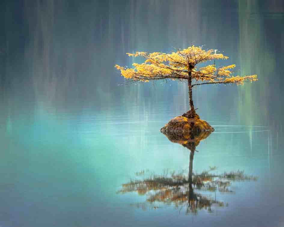Tranquilidad en el agua y en ambiente