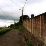 Cesta u zdi