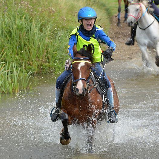 Hoje em Euston Park Campeonato de Endurance Poney Club NEWS & RESULTS: The ...