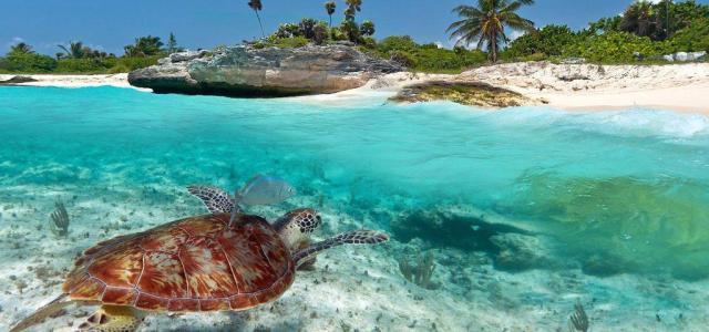 """Playa del Carmen, ciudad más """"amigable"""" de México según Expedia"""