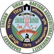 CCU HAU Haryana Recruitment Apply Online 334 Various Post