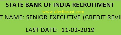 SBI RECRUITMENT APPLY FOR SENIOR EXECUTIVE (CREDIT REVIEW)