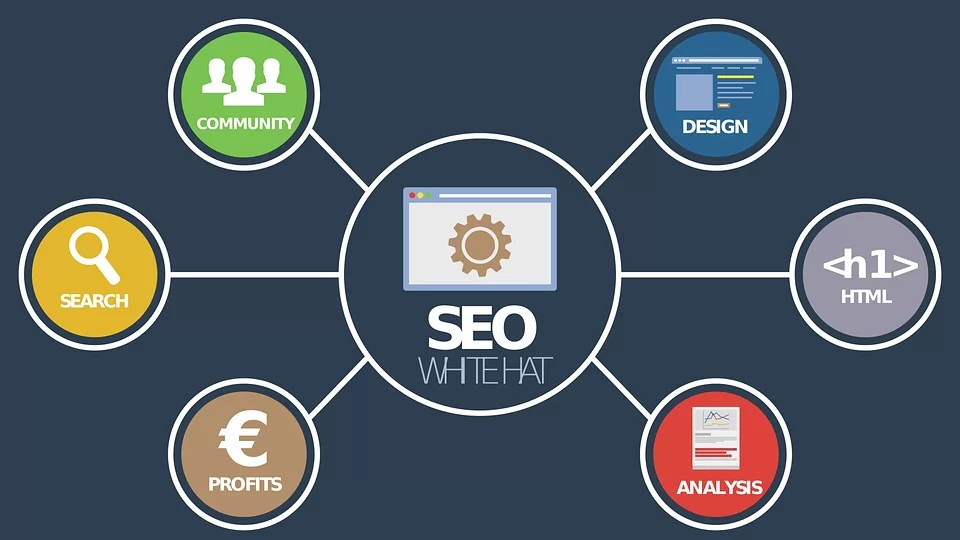 How Does SEO Services Promote Your Business?