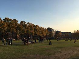 museumplein park