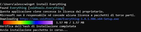 winget installa il programma everything