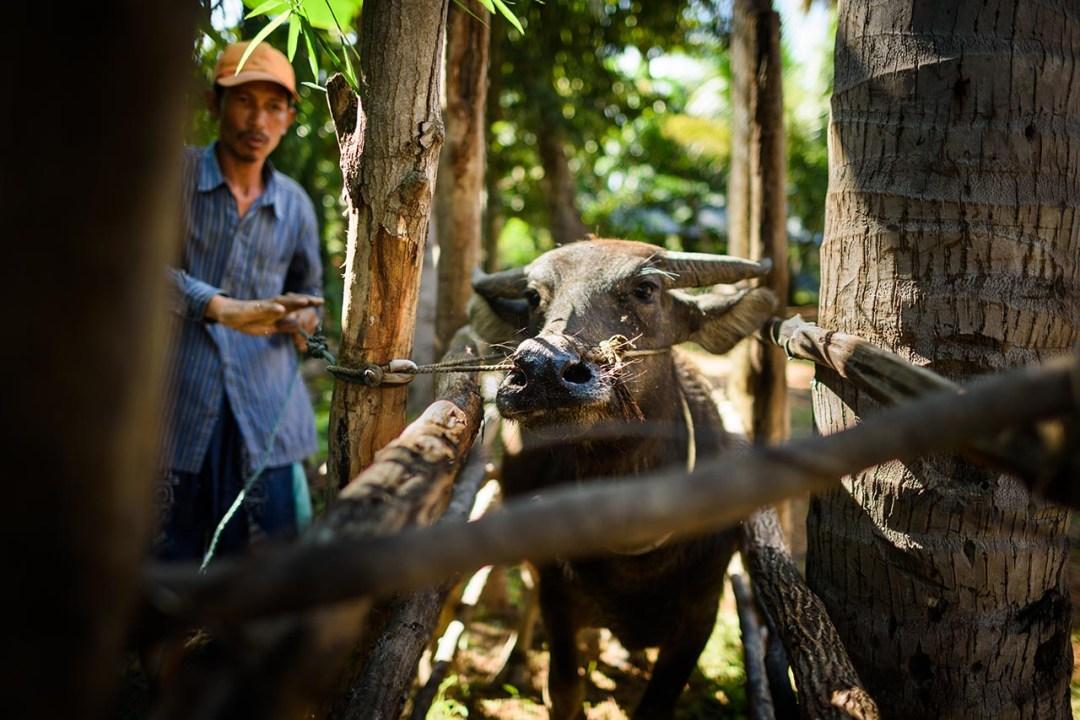Viaggio fotografico in Cambogia
