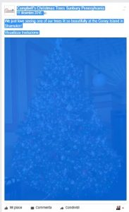 Le immagini di Natale per l'algoritmo di Facebook: il data mining - image  on http://www.alessiacamera.com