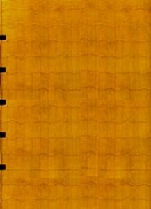 Pavese –Verrà la notte e avrà i tuoi occhi Legatura con cuciture a vista su lacci in cuoio, piatti in carta giallo oro su struttura a rete