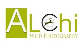 Alessio Chiariglione Wild Photography
