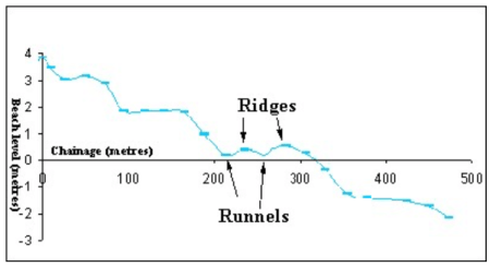 Beach profile containing ridges and runnels