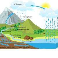 The drainage basin hydrological system