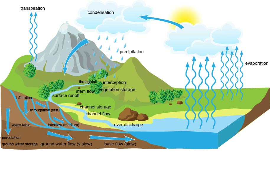 Figure 2. The drainage basin hydrological system