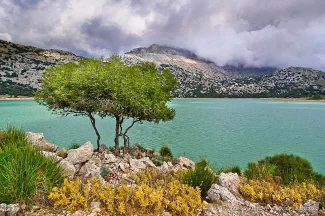 The Cuber reservoir and a cloud-covered Puig Major in the background, in the Sierra Tramuntana range of Majorica, Spain. September 2008.