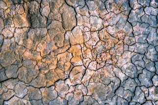 Cracked mud detail at Clark Dry Lake, Anza Borrego Desert State Park, San Diego County, CA. March 2013.