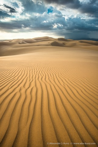 Algodones Dunes near Glamis, Imperial County, California. September 2014.