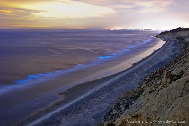 "Bioluminiscent ""Red Tide"" algae bloom at night, seen from Torrey Pines Gliderport, San Diego, CA. October 2011."