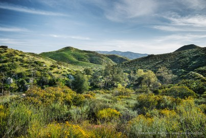 Overview of Hollenbeck Canyon, Jamul, California, USA