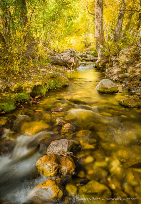 McGee Creek 5 -- McGee Creek, Mono County, California, United States