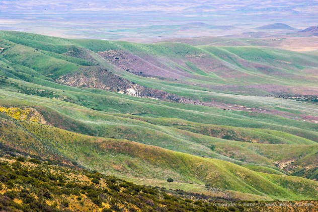 Pastel Slopes -- Carrizo Plain, San Luis Obispo County, CA. April 2011.