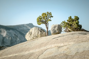 Pines, Juniper, Boulders and Clouds Rest -- Olmsted Point, Yosemite NP, California, United States