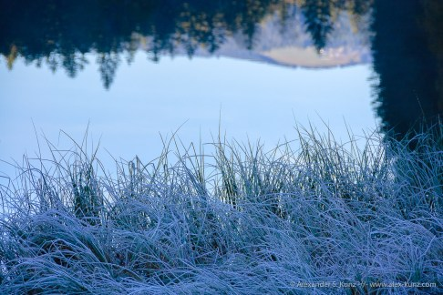 Cold Shore of Frillensee, Inzell, Bavaria, Germany