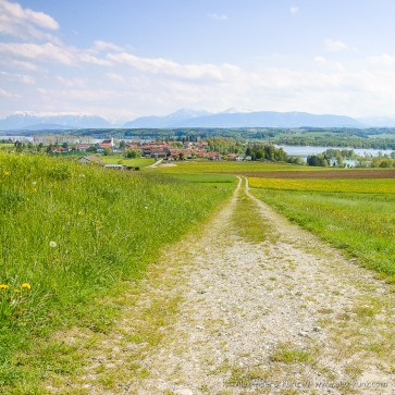 Farm Road to Tettenhausen, Bavaria, Germany. May 2008.