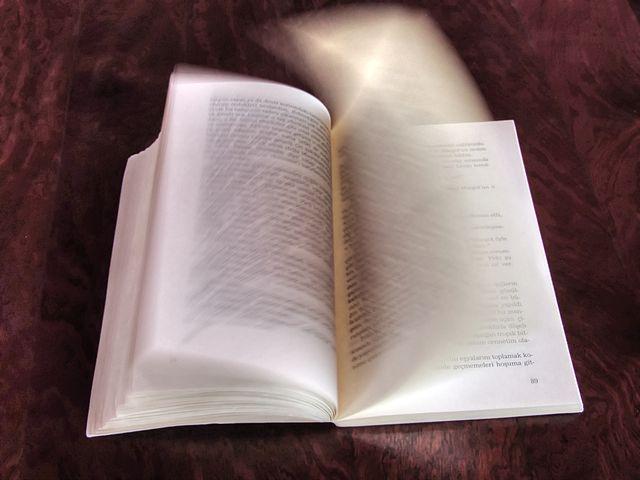 Publizieren kann man in vielerlei Art und Weise. Mittlerweile elektronisch besser als in Form eines Buches. Foto: Nevit Dilmen – Buch (Wikipedia)