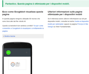 Test di compatibilità mobile friendly