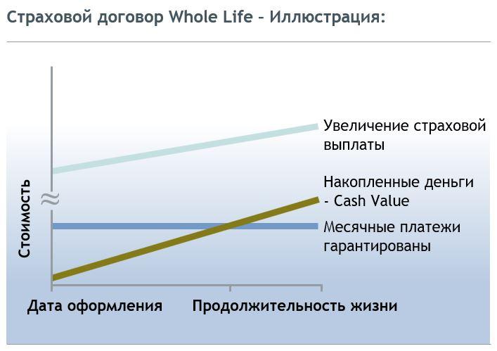 Страховой договор Whole Life - Иллюстрация