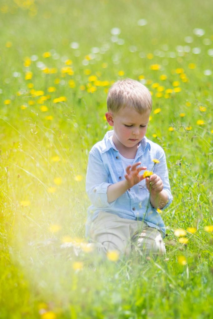 Young boy picking flowers in a wild meadow