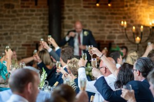 wedding photo of people toasting the speeches