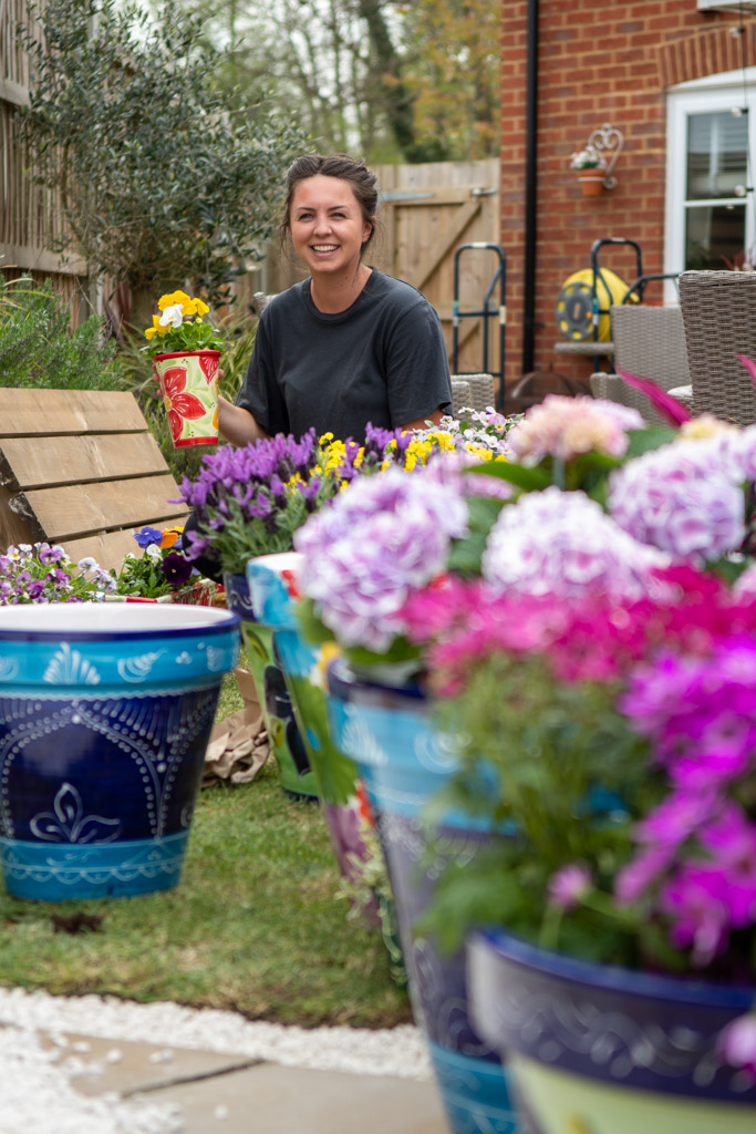 Advertising and product photo for a garden wholesaler