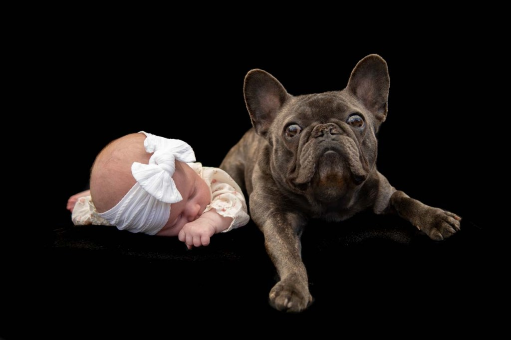 Baby and French bulldog