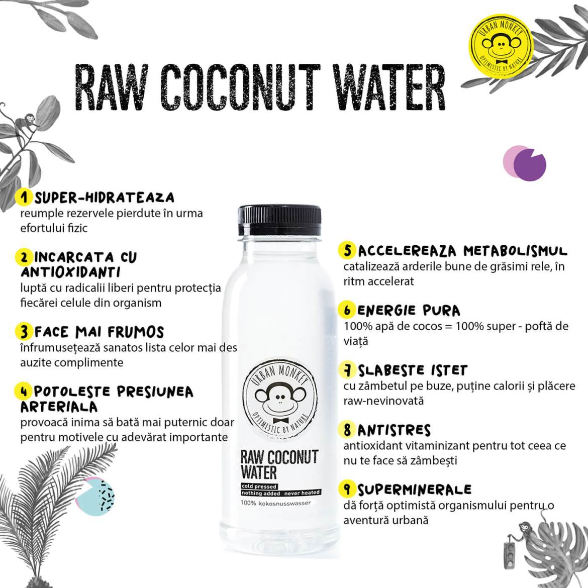 Urban Monkey Raw Coconut Water