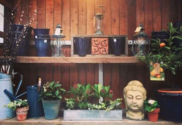 Frost-proof glazed burmese pots & vintage garden
