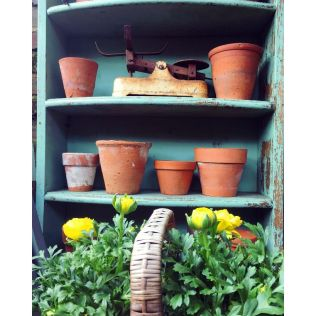 Vintage Pots