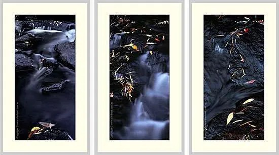 Lefroy Brook Series SF21, SF23, SF31, Pemberton. Three  unmounted photographic prints 15x30 inches
