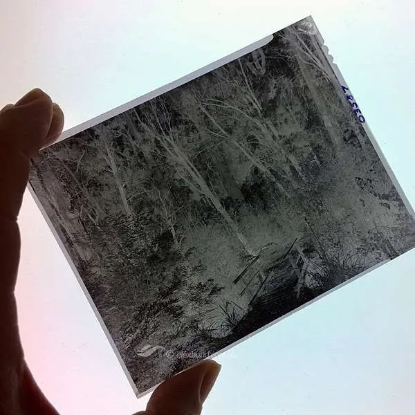 Overdeveloped negatives | printing from difficult negatives