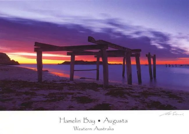 Hamelin Bay Postcard