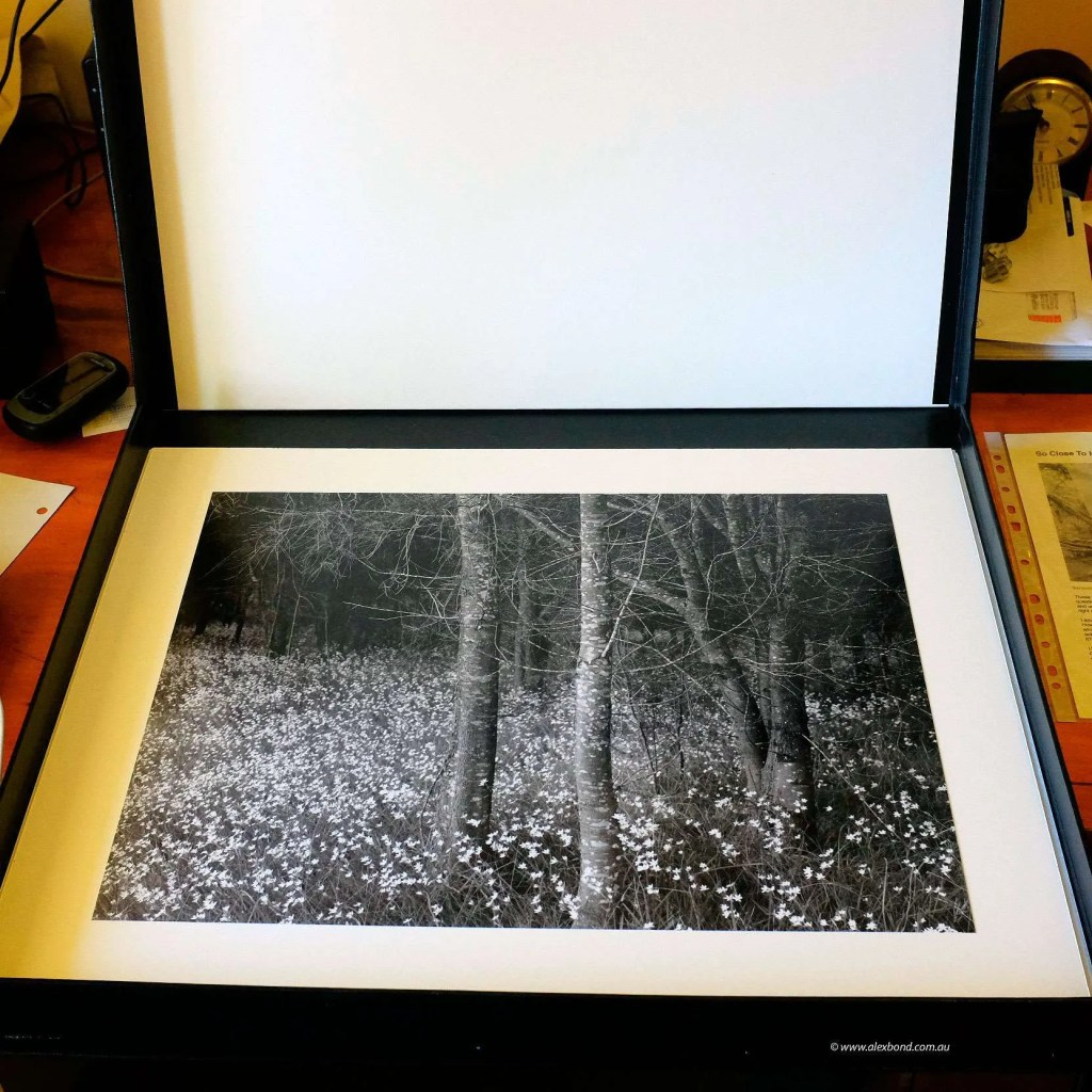 large format landscape photography prints in archival clamshell storage